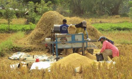 cara kerja mesin perontok padi